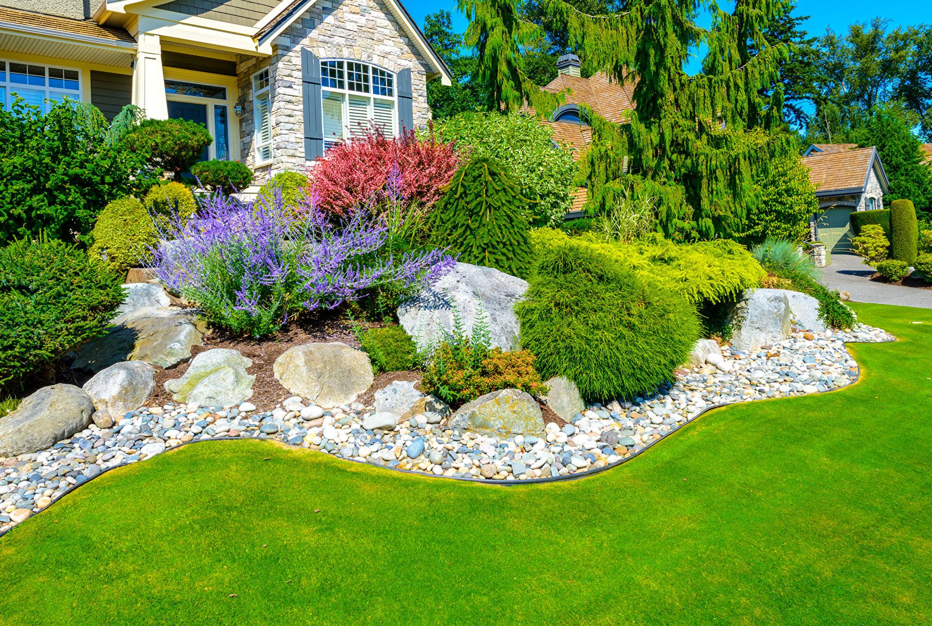 Как украсить газон растениями